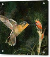Flower Bird Acrylic Print