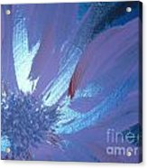 Flower Blue II Acrylic Print