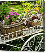 Flower Cart In Garden Acrylic Print by Elena Elisseeva