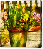 Flower - Daffodil - A Pot Of Daffodil's Acrylic Print by Mike Savad