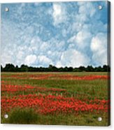 Flower Fields Forever Acrylic Print