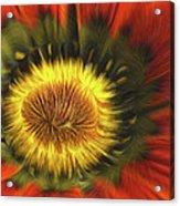 Flower Fractal Acrylic Print
