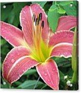 Flower Garden 01 Acrylic Print
