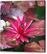 Flower Garden 67 Acrylic Print