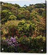 Flower Garden On A Hill Acrylic Print