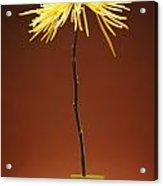 Flower In A Vase Acrylic Print