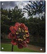 Flower In Bloom Acrylic Print