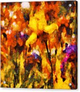 Flower - Iris - Orchestra Acrylic Print by Mike Savad