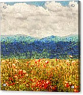 Flower - Landscape - Fragrant Valley Acrylic Print by Mike Savad