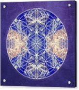 Flower Of Life Blue Acrylic Print
