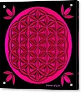 Flower Of Life - Pink Acrylic Print