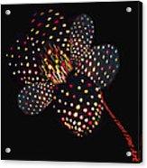 Flower Of Lights Acrylic Print