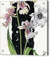 Flower Orchid 06 Elena Yakubovich Acrylic Print by Elena Yakubovich