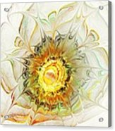 Flower Palette Acrylic Print