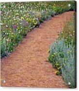 Flower Path Acrylic Print