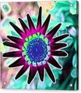 Flower Power 1448 Acrylic Print