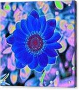 Flower Power 1452 Acrylic Print
