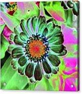 Flower Power 1454 Acrylic Print