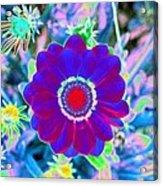 Flower Power 1458 Acrylic Print