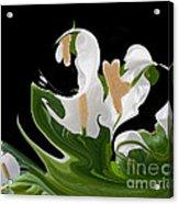Flower Power Abstract Acrylic Print