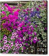 Flower Riot Acrylic Print