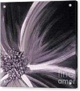 Flower Romance II Acrylic Print