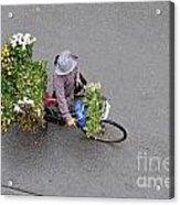Flower Seller In Street Of Hanoi Acrylic Print by Sami Sarkis