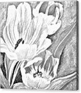 Flower Sketch Acrylic Print
