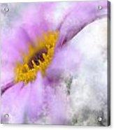 Flower Slightly Abstract Acrylic Print