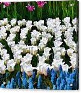 Flower Splash X Acrylic Print