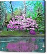 Flower Tree Reflections Acrylic Print