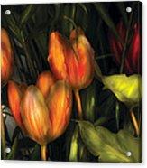 Flower - Tulip -  Orange Irene And Red  Acrylic Print