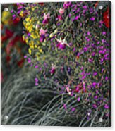 Flower Wall At The Falls Selective Color Acrylic Print