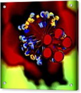 Flower With'in Acrylic Print