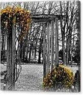 Flowering Archway Acrylic Print