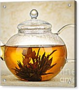 Flowering Blooming Tea Acrylic Print