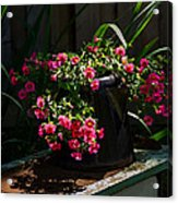 Flowering Coffee Pot Acrylic Print