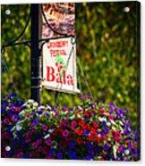 Flowerpot In Bala Acrylic Print