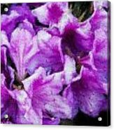 Flowers 2078 Embossed Acrylic Print