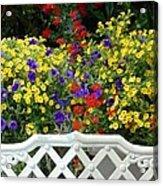 Flowers 53 Acrylic Print