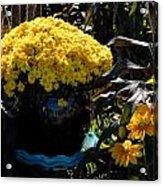 Flowers 537 Acrylic Print