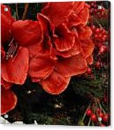 Flowers 554 Acrylic Print