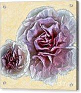 Flowers 7993 Acrylic Print
