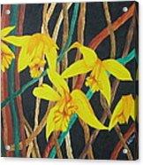 Flowers A Flame Acrylic Print