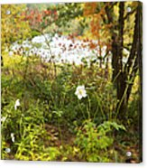 Flowers Along The River In Fall Acrylic Print