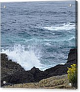 Flowers And Crashing Waves Acrylic Print