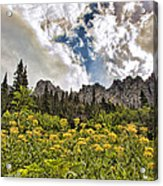 Flowers And Mountains And Sky...oh My Acrylic Print