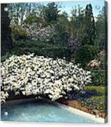 Flowers And Pool Acrylic Print