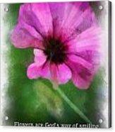 Flowers Are Gods Way 01 Acrylic Print