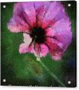 Flowers Are Gods Way 03 Acrylic Print